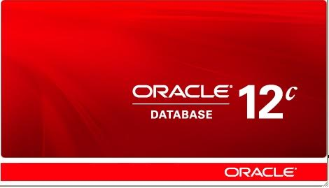 Oracle Veritabanı